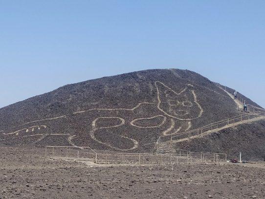 Descubren geoglifo de 2,000 años en forma de gato en la zona de líneas de Nasca, Perú