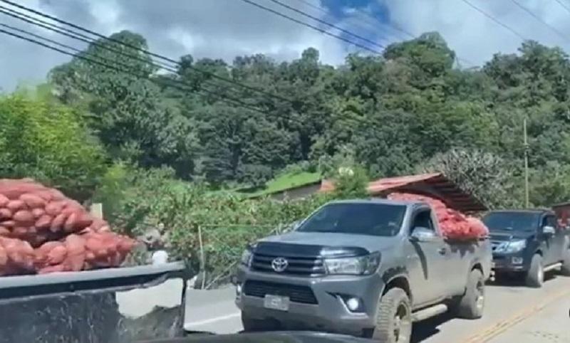 Agricultor de Cerro Punta aseguró que producción de hortaliza y papa no se perdió