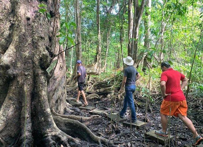 El turismo y sus retos post pandemia