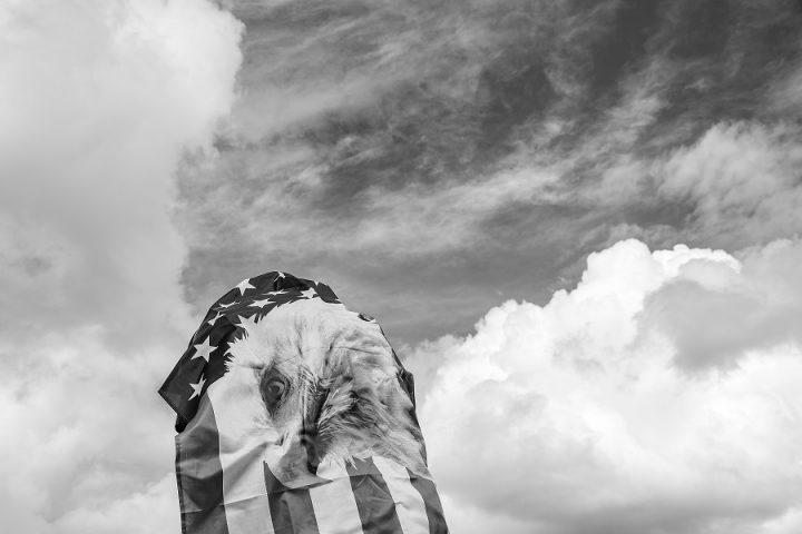 Opinión: En las elecciones hubo un perdedor: Estados Unidos
