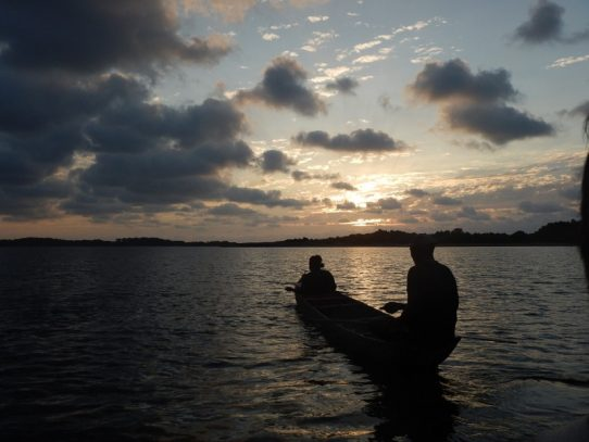 """ONG´s y sector científico piden """"veto parcial"""" a nueva Ley de Pesca"""