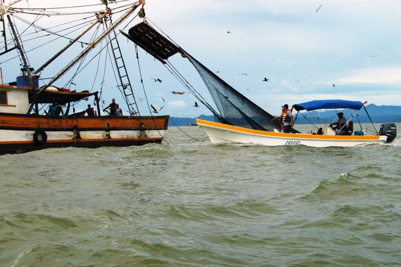 Medidas de movilidad para el sector pesquero