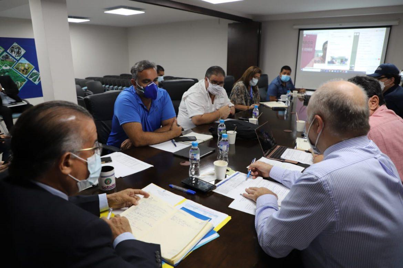 Se reactiva compra de cerdos para el Plan Panamá Solidario