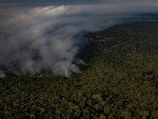 ¿Por qué sigue ardiendo el bosque tropical en Brasil?