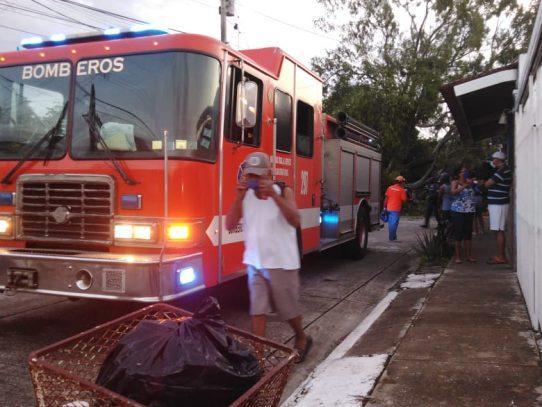 Caída de árbol deja varias viviendas afectadas en Don Bosco