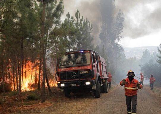Un bombero muerto en labores para sofocar un incendio en Portugal