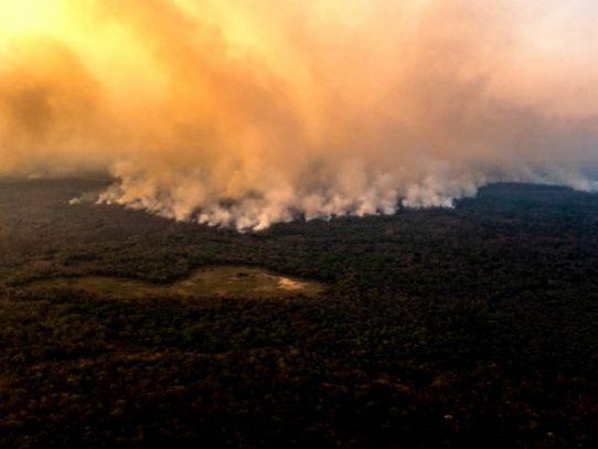 Los incendios en Brasil queman los humedales tropicales más grandes del mundo a una escala 'sin precedentes'