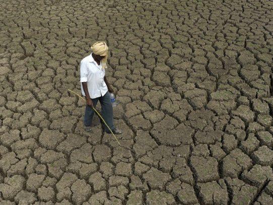 Los efectos devastadores del calentamiento serán una realidad en los próximos años