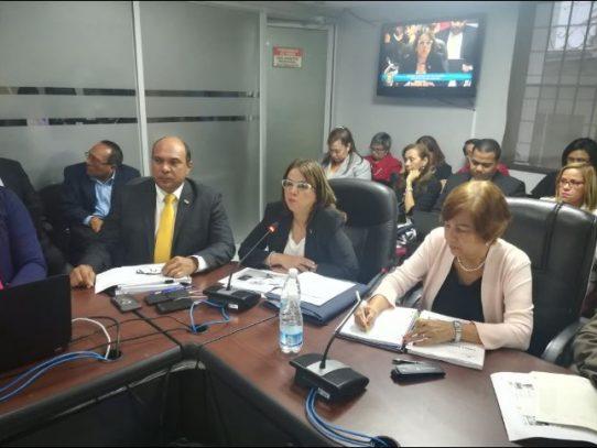 Meduca y MiCultura sustentan vista presupuestaria para 2020
