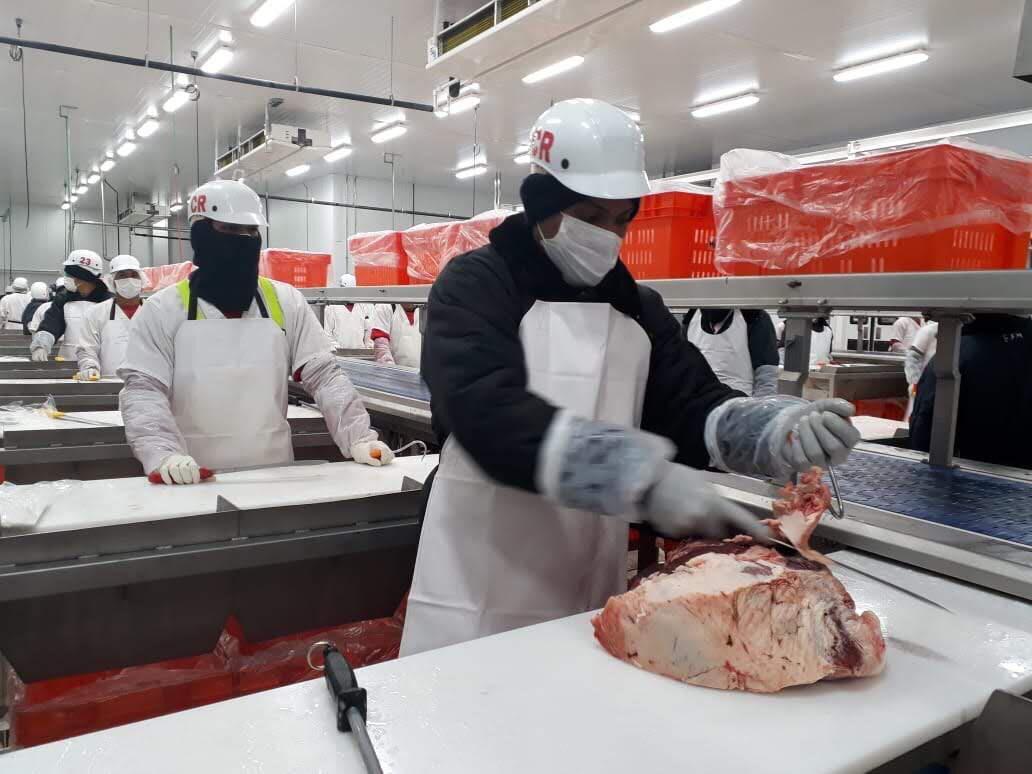 Panamá espera en dos años estar exportando carne bovina a EE.UU.