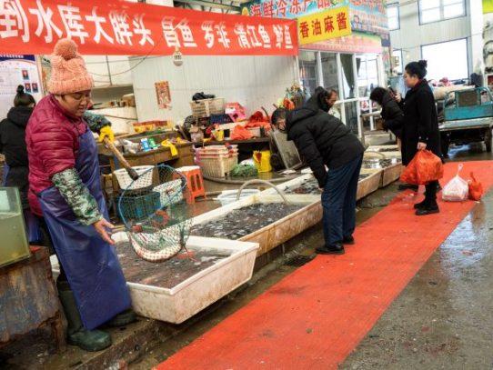 Los mercados chinos repletos de fauna silvestre son un hervidero de nuevos virus