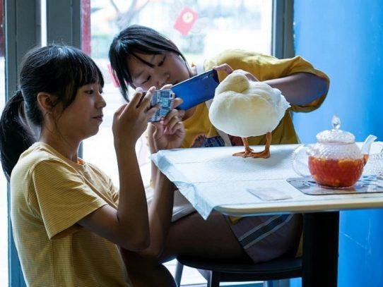 """Bebidas y """"cuacs"""", la oferta de una cafetería de China"""