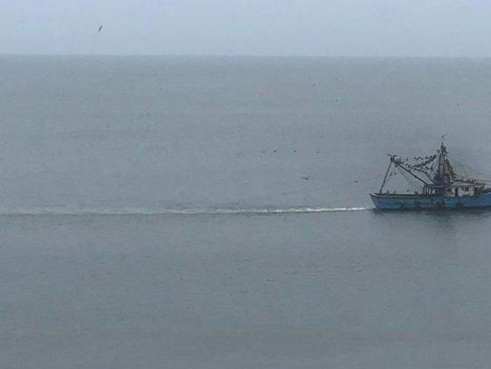 ARAP detecta pesca ilegal en cuatro embarcaciones