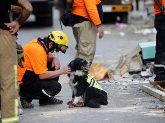 Socorristas chilenos continúan la búsqueda de posible superviviente en Beirut
