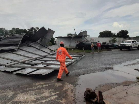 Sinaproc reporta árboles caídos y techos desprendidos en Panamá Oeste