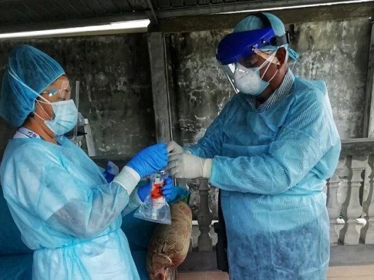 Se detectan 532 nuevos casos de Covid-19 y se suman 12 muertes
