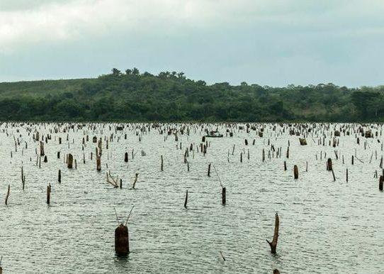 Cambio climático amenaza al Canal a 20 años del traspaso por EEUU