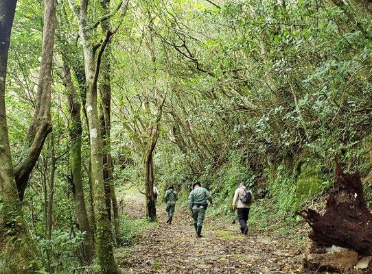 MiAmbiente realiza 617 patrullajes para proteger Parques Nacionales en Chiriquí
