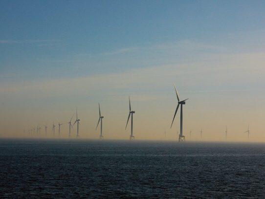 Con la mayoría de la economía mundial desacelerada, la energía limpia se activa