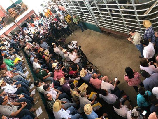 Entregan sementales de alta genética a productores en Veraguas