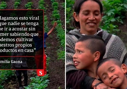 Familia campesina colombiana conquista YouTube con 'tips' para abrazar el agro