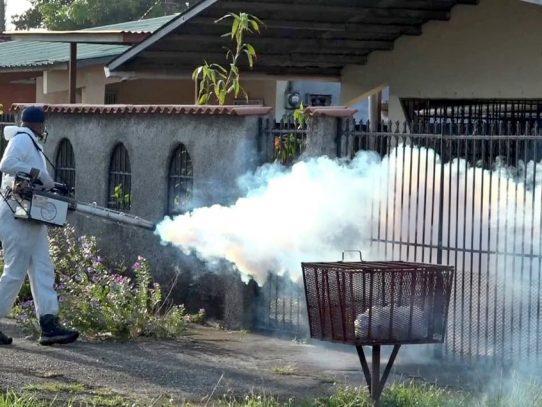 Casos de dengue se elevan a 521 en el área metropolitana