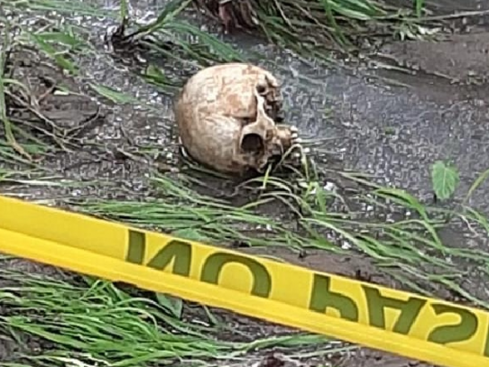 Hallan un cráneo en una quebrada del sector de Río Mar, distrito de San Carlos
