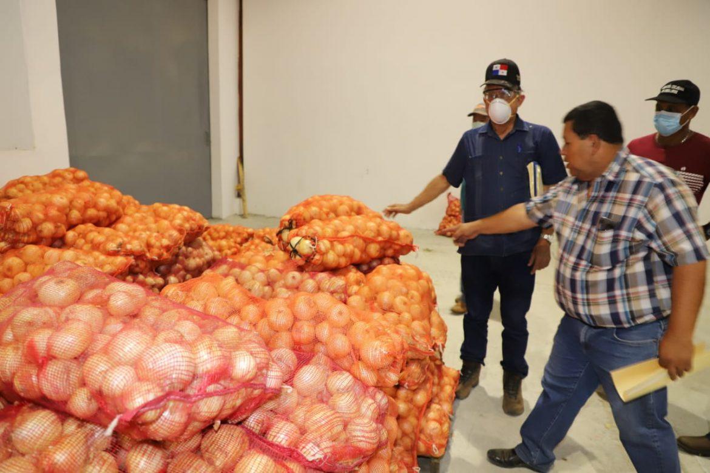 Gobierno Nacional acelerará compra de cebolla a productores de Coclé