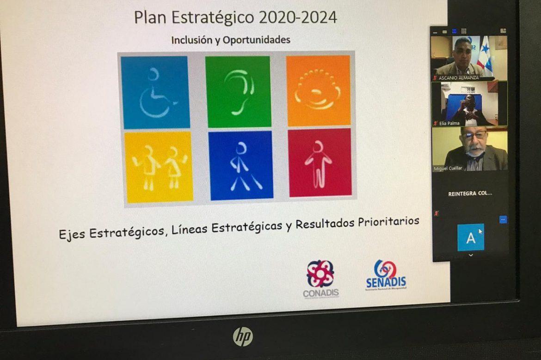 Senadis realiza consultas para la consecución del Plan Estratégico Nacional 2020-2024