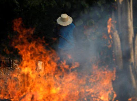 Los incendios en la selva amazónica se propagan