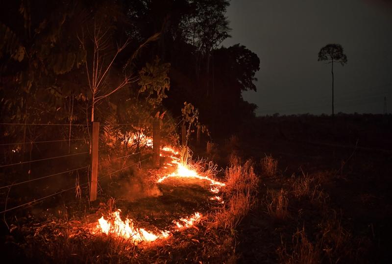 Cumbre pacta defender Amazonía en medio de 'dardos' de Brasil