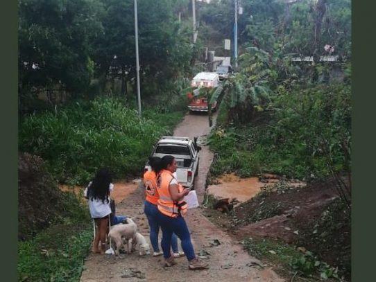 Suman a 75 las familias afectadas por granizada en el Oeste