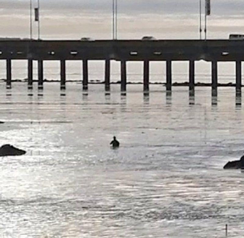 Rescatan a hombre atrapado en la lama, en San Francisco