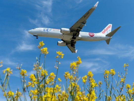 Iberia busca impulsarse gracias a América Latina con la compra de Air Europa