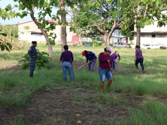 Inicia segunda fase del proyecto de Riego Intensivo de Arroz en Llano Marín