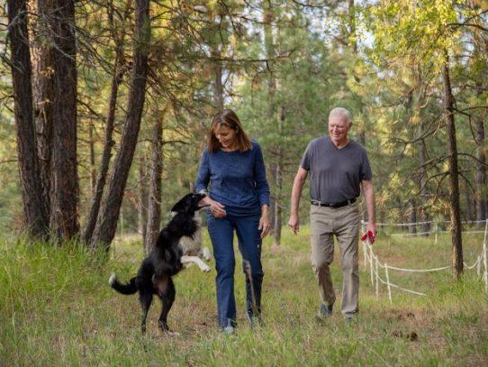 Ella renunció a su trabajo, él compró gafas nocturnas y buscaron a su perra durante 57 días