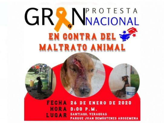 Convocan a Gran Protesta Nacional contra el maltrato animal