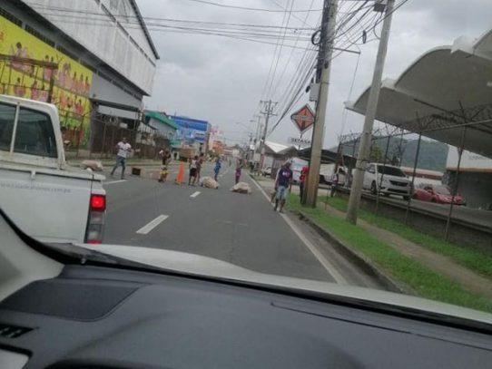 Manifestantes cierran Avenida Frangipani