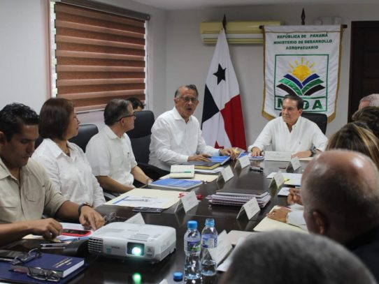 Firman resolución para consumo y productividad del arroz
