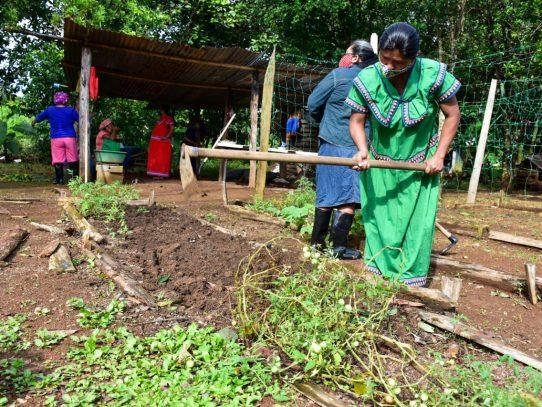 Mides y Banco Mundial lanzan proyecto para potenciar granjas autosostenibles