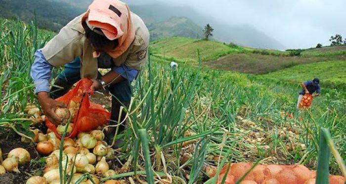 Banconal firma convenio con el Instituto de Seguro Agropecuario para agilizar los procesos