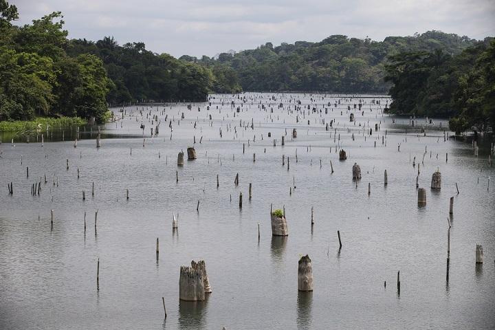 Panamá avanza en la ruta por establecer sus nuevos compromisos climáticos