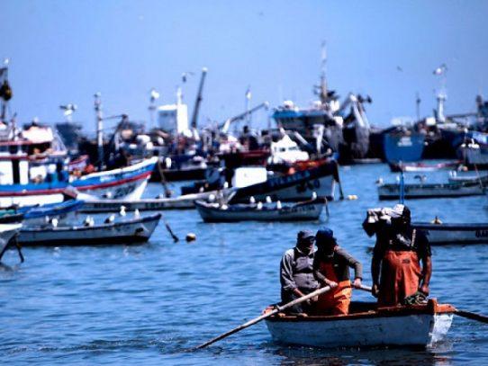 Piden a Cortizo veto parcial para la nueva Ley de Pesca