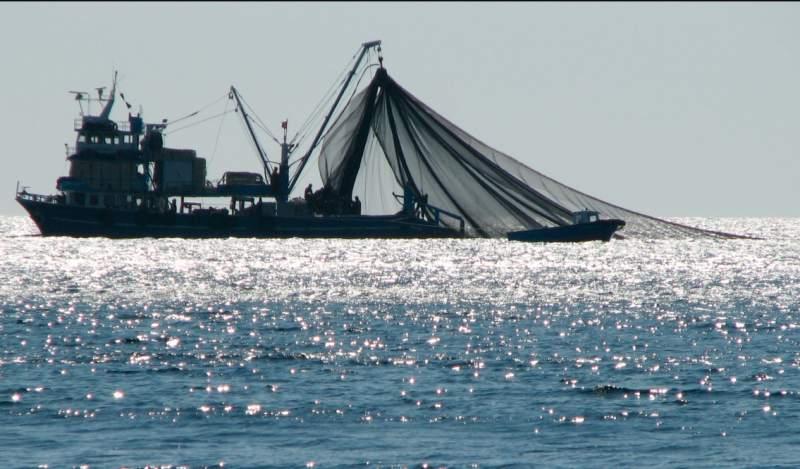 Panamá  adopta medidas contra 168 buques implicados en la pesca ilegal