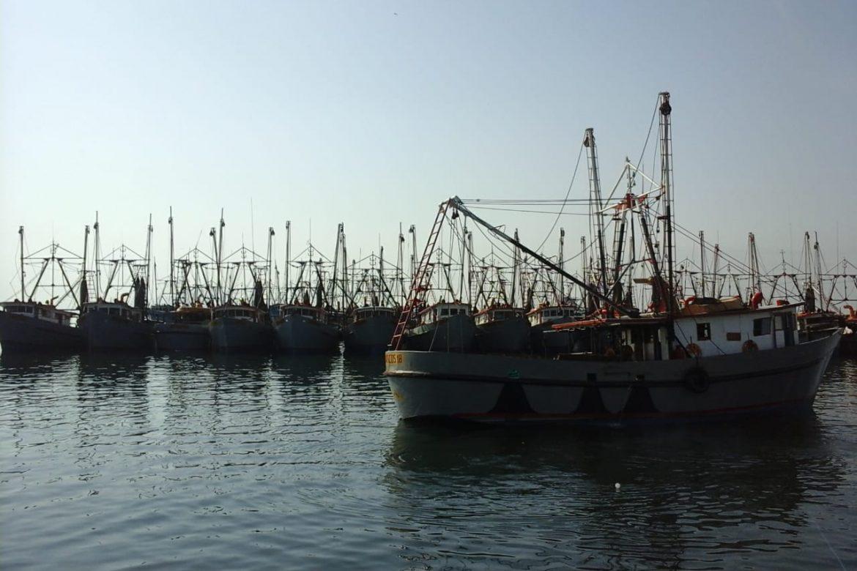 Evaluación de la UE determinará futuro de exportaciones pesqueras