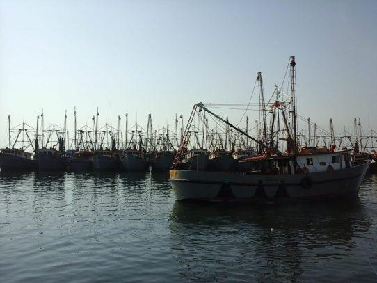 Prestigiosa auditora reafirma estándares de calidad de la Dirección de Gente de Mar