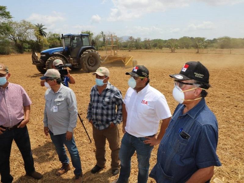 Gobierno pagará incentivo de $7.50 por quintal de arroz a productores