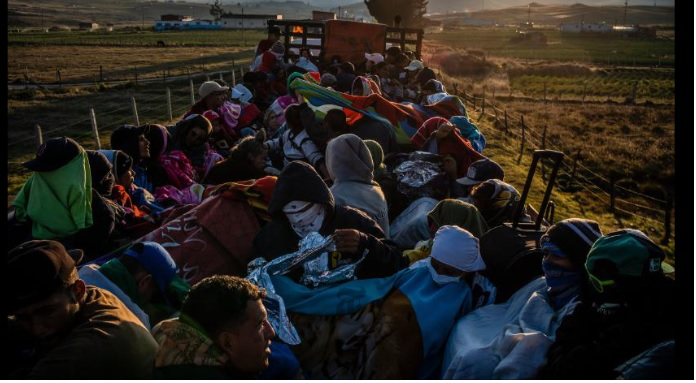 Médico, refugiado. Violinista, refugiada. Modelo, refugiada.