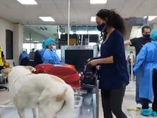 36 mexicanos son repatriados en vuelo humanitario desde Tocumen