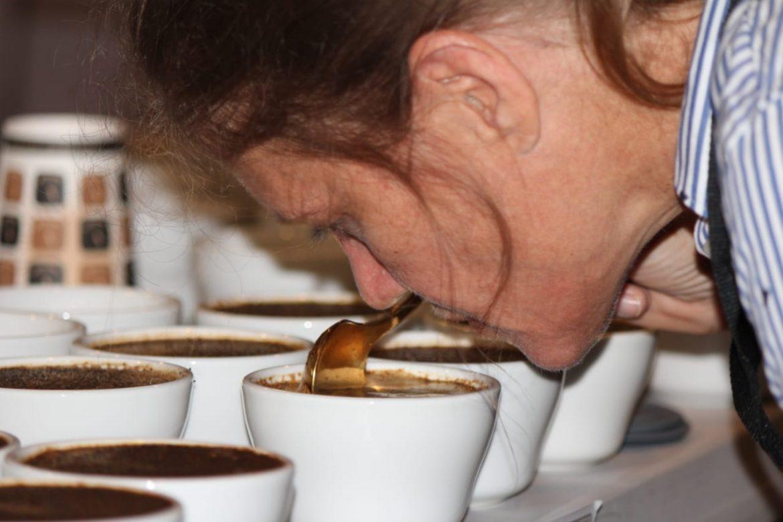 "78 lotes de café pasaron a la XXIII Cata Internacional ""The Best of Panama"""